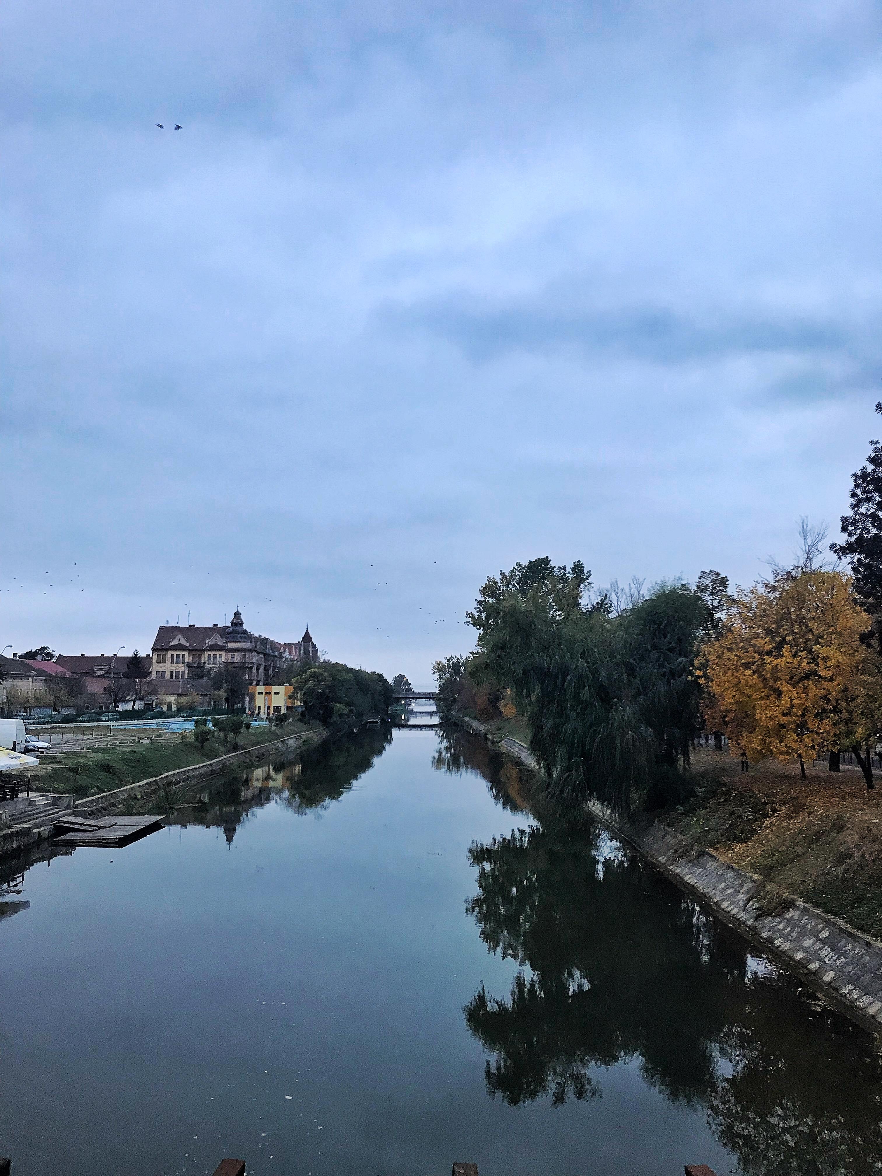 Heritage of Timisoara